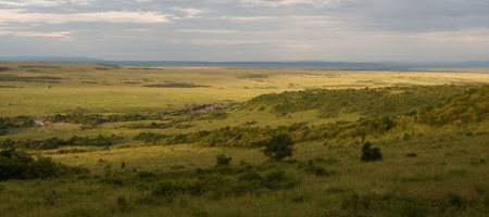 http://sandragesafaris.com/wp-content/uploads/2017/02/masai-mara.jpg